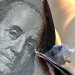 Le dollar va très fortement chuter !